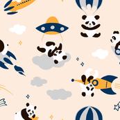 Panda rockeet