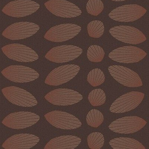 sandy_shell_cocoa_brown