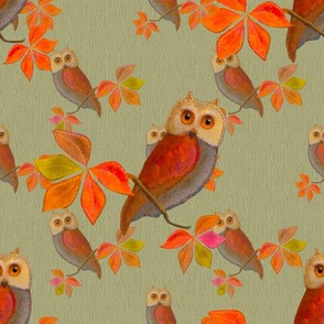 Friendly Owls on Pistachio Sage