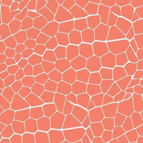 Crocodile Print Pattern