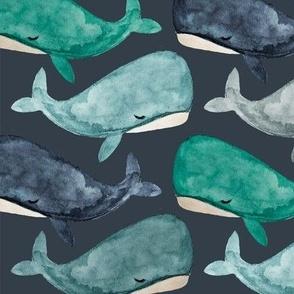 jonah's whale // 174-16