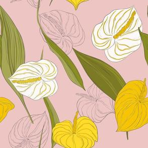 Kala pink yellow