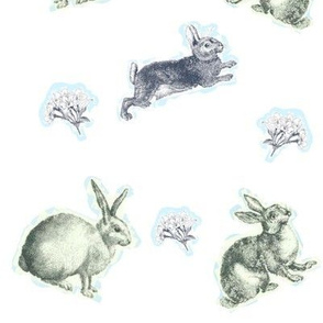 bunny toile