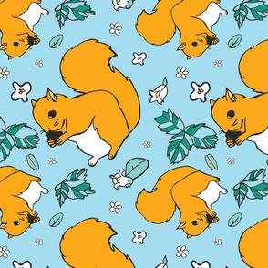 squirrel blue background