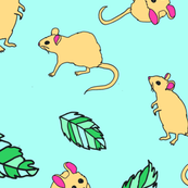 mouse blue background
