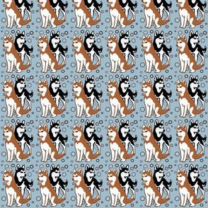 6962867_rdouble-colors-siberian-husky-by-dogdaze_22