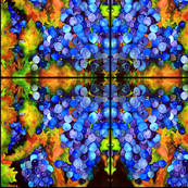 Grapes Abstract Pattern