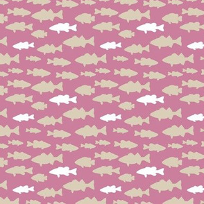 (small scale) fish || pink custom  C19BS