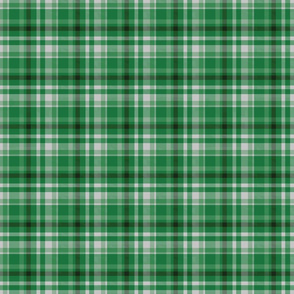 Kelly Dark and Fern Green, Tartan