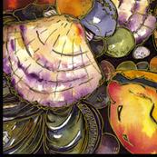 Sea Shells Medium Scale