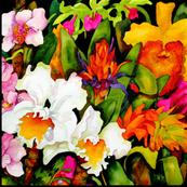 Tropical Orchids Medium