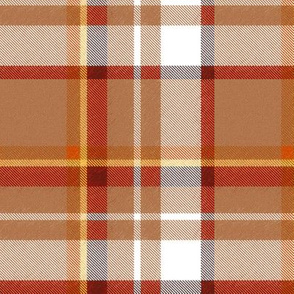 Asymmetrical Speckled Tan Rust Yellow and White Plaid