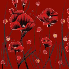 Fiery Poppies