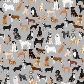 working dogs fabric - working dogs group fabric, dog fabric, dogs fabric, working dogs design  - grey