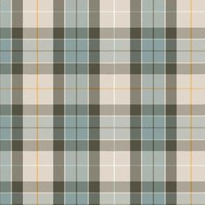 "Fraser hunting tartan, custom colors #3 (6"")"