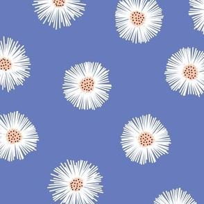 daisies - lilac