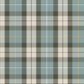 "Fraser hunting tartan, custom colors #2 (6"")"