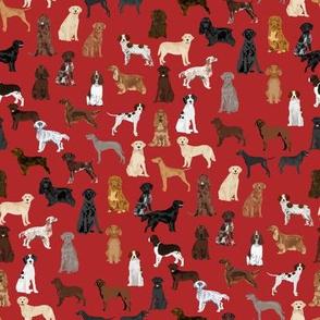 sporting dogs fabric - dog breeds fabric, sporting group fabric, dog breeds, dog, dogs - red