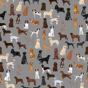 sporting dogs fabric - dog breeds fabric, sporting group fabric, dog breeds, dog, dogs - grey
