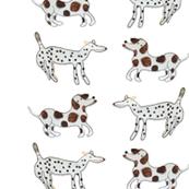 Dog Dot Stripe