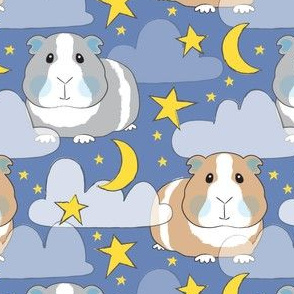 starry night guinea pigs