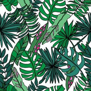 Hand-drawn tropical leaves