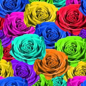 Rainbow Roses #1
