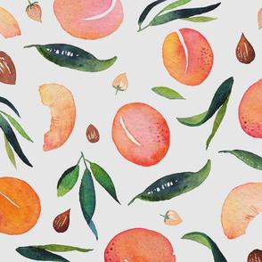 Apricot summer
