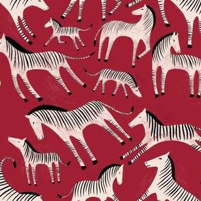 Jonny's Zebras