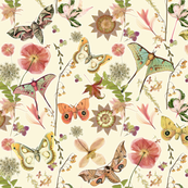 Moths n Flowers Cream/Pale Yellow