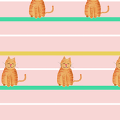 pink striped cat