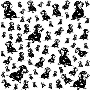 Dachshund Dog black white fabric