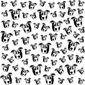 Pit Bull Dog black and white fabrics