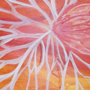 Mirrored Lotus