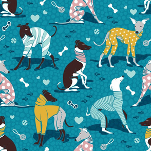 Greyhounds dogwalk // normal scale // turquoise background