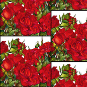Rose Red Small Scale