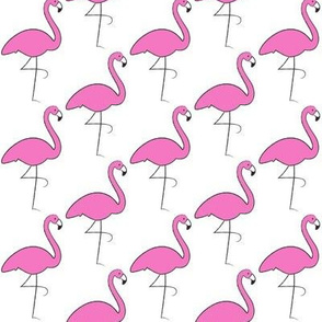 repeating flamingos on white