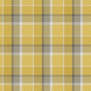 Tartan for Little Owl Birds In Winter Forest