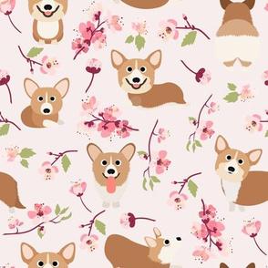 "9"" Corgi in spring florals fabric, cherry blossom sakura in asia, pink"