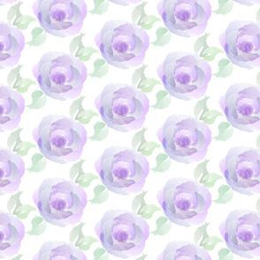 Purple Rose Watercolor-01