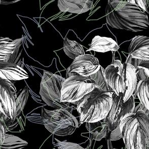 Black and white plant – intelligent and elegant  graphics