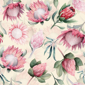 "12"" Hand drawn watercolor protea flower cream floral"