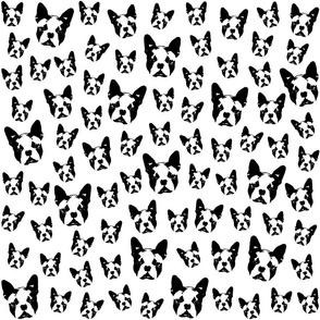 Boston Terrier Dog black white fabrics