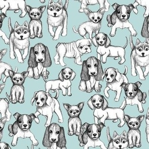 All the Little Puppies - pencil sketch puppies on light blue