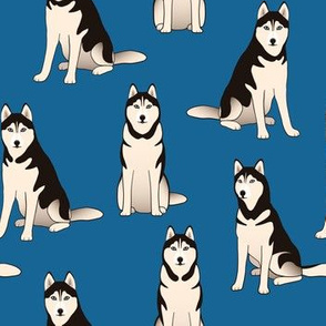 Husky Dogs on dark blue