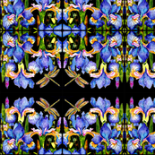 Solo Dragonfly & Iris Abstract Pattern