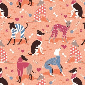 Greyhounds dogwalk // small scale // coral background