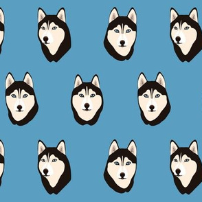 Husky Heads on blue