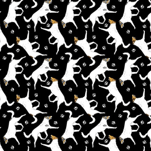 Trotting Color head white smooth coated Collies and paw prints - black