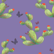 prickly pear and butterfies on lavender